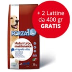 Forza10 Maintenance Medium/large con Agnello e Riso: 15 kg + 2 Lattine da 400 gr Gratis